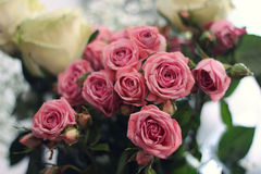Blomma på en ljus bakgrund Royaltyfria Bilder