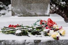 Blomma på grav av Josef Stalin framme av Kremlväggen Kremlväggnekropol i vinter i Moskva Ryssland arkivbild
