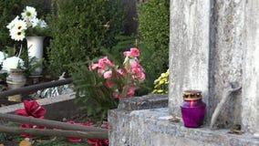 Blomma på grav och lilastearinljusljus på stenen i kyrkogård 4K lager videofilmer