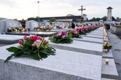 Blomma på gravstenen i minnesdagen royaltyfri foto