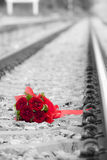 Blomma på järnväg Arkivfoto