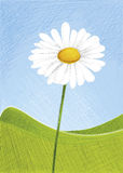 Blomma på landskap Royaltyfri Fotografi