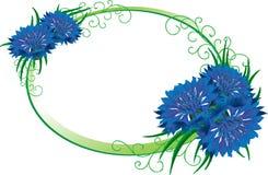 blomma ramen Isolerad bukettblåklint Arkivfoton