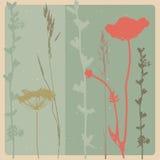 blomma red Royaltyfri Bild
