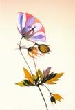 Blomma som är handpainted Royaltyfri Foto