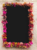 Blomma som inramas runt om den svart tavlan på stenväggen Arkivbilder
