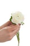 blomma som rymmer den vita kvinnan Fotografering för Bildbyråer