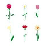 Blomma symboler Royaltyfria Foton
