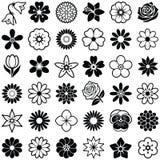Blomma symboler Royaltyfri Bild