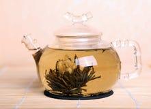 blomma tea Arkivfoto