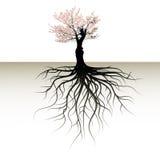 blomma tree Royaltyfria Bilder