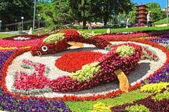 Blomma utställning` Japan till och med ögonen av Ukraina ` på Spivoche Pole i Kyiv, Ukraina royaltyfri bild