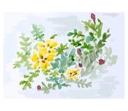 Blomma vektorillustration Arkivbild