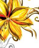 blommaakvarell Royaltyfri Fotografi