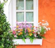 Blommaask i fönster Royaltyfri Bild