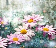 Blommabackgrond, vårblom Arkivbild