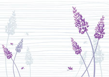 Blommabakgrund Arkivbild