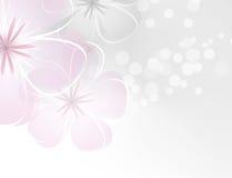 Blommabakgrund Royaltyfri Bild