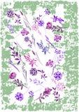 Blommabakgrunden är Vektorillustrationen är Royaltyfria Foton