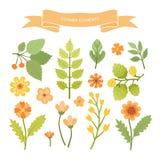 Blommabeståndsdelar Royaltyfri Fotografi