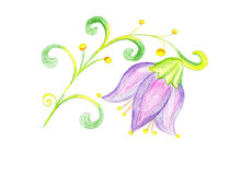 Blommablåklockateckning på papper Royaltyfri Fotografi