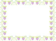 Blommablåklockateckning på papper Royaltyfria Foton