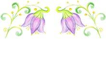 Blommablåklockateckning på papper Royaltyfria Bilder