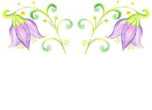 Blommablåklockateckning på papper Arkivbilder