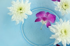 Blommabrunnsort Arkivbild