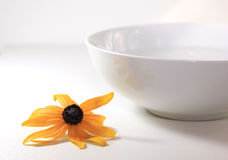 blommabrunnsortvatten Arkivfoto