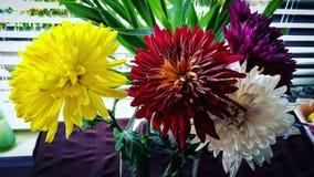 Blommabudgeter! arkivfoto
