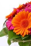 Blommabukett i rosa färger och apelsin Arkivfoto