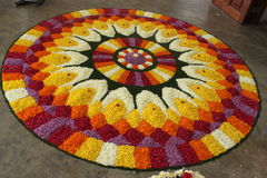 Blommacirkel Royaltyfria Bilder