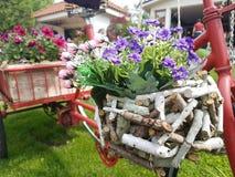 Blommacykel Arkivbild