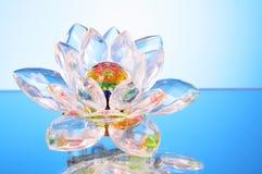 blommaexponeringsglaslotusblomma Royaltyfri Foto