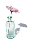 blommaexponeringsglasvase Arkivfoto