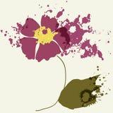 Blommafärgstänk Arkivbild