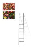 blommafönster Arkivbild