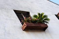 Blommafönsterask Arkivbilder