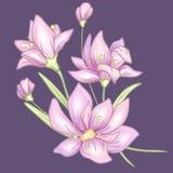 Blommafilialviolet vektor illustrationer