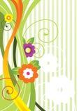 blommafjäder Arkivbild
