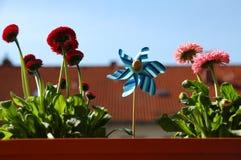 blommafjäderwindmill royaltyfri bild