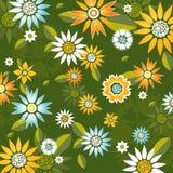 blommafjädervektor Royaltyfri Fotografi