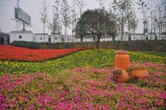 Blommaformer Royaltyfri Fotografi