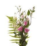 blommafragment Royaltyfri Bild