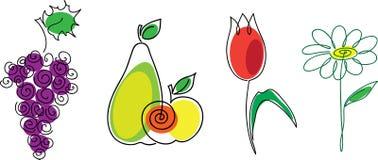blommafrukt Royaltyfria Bilder