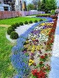 Blommafyrkant bredvid monumentet till de Kosovo hjältarna av KruÅ ¡ evac royaltyfria foton