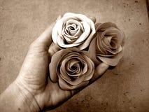 blommagåva Royaltyfria Foton