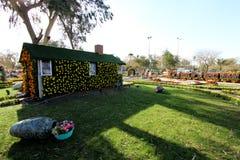 Blommagalleri i Baghdad Royaltyfria Foton