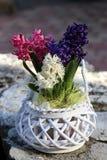 Blommagarnering i den vita blomkrukan arkivfoton